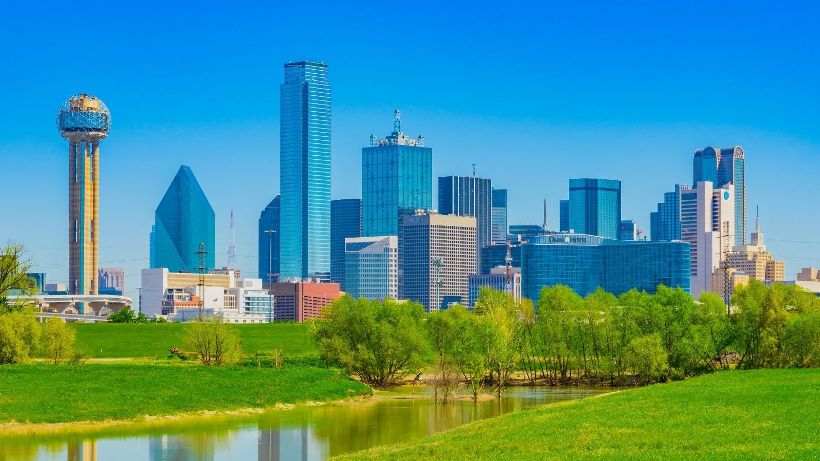 5 Best Things to Do in Dallas, TX